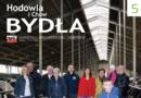 Błędy polityki rządowej dotyczące programów hodowlanych bydła mlecznego wPolsce