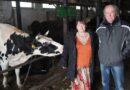 Fotowoltaika wgospodarstwie mlecznym