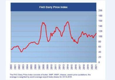 Indeks cen żywności FAO rośnie od dziewięciu miesięcy