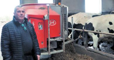 Automatyczne żywienie krów: wiele korzyści